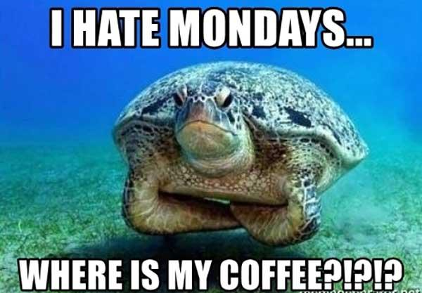 i-hate-mondays-where-is-my-coffee