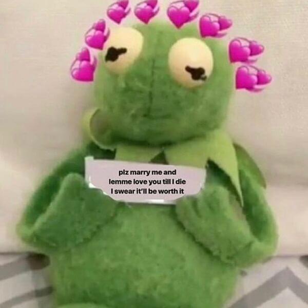kermit love memes marry me