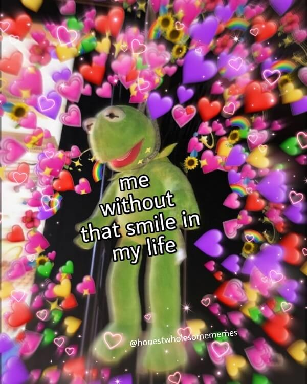 kermit love memes me witout that smile in your life