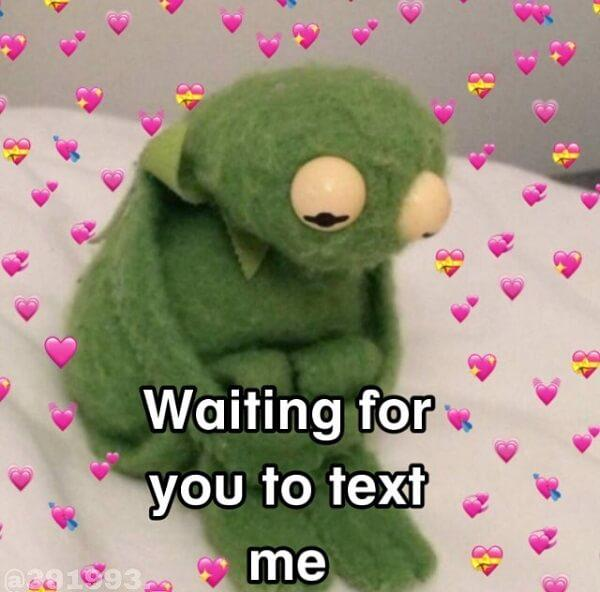 kermit love memes waiting for you to text me