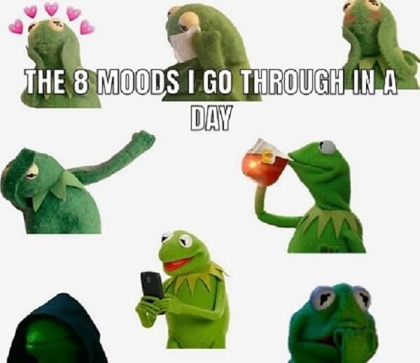 kermit meme 8 moods in the day