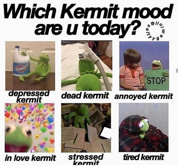 kermit meme mood today