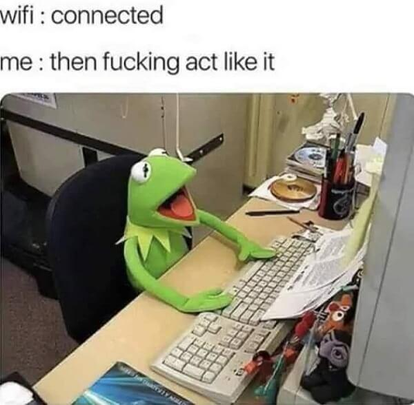 kermit meme wifi connected