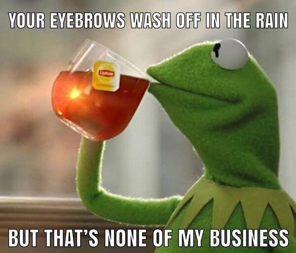 kermit the frog tea meme eyebrowns wash off in the rain