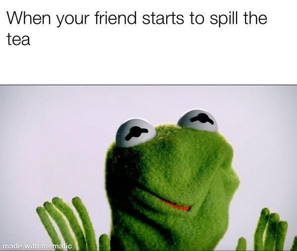 kermit the frog tea meme when your friend starts to spill the tea