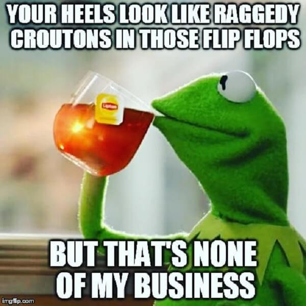 kermit the frog tea meme