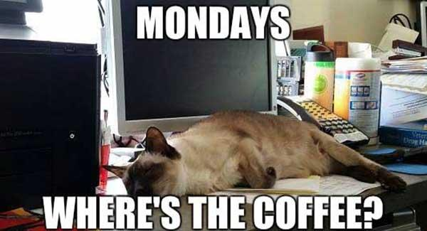 monday where is my coffee