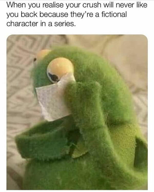 sad kermi meme character un a series