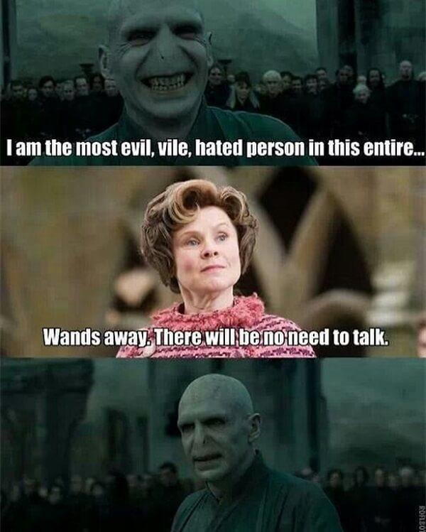 voldemort memes i am the most evil hated person in the entire world