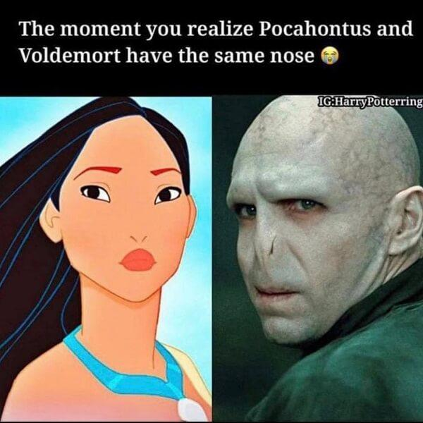 voldemort memes pocahontus and voldemort have the same nose