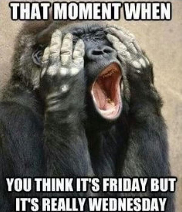 wednesday meme that moment when...