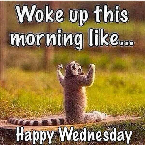 wednesday meme woke up like this