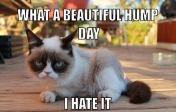 what a beautiful grumpy hump day