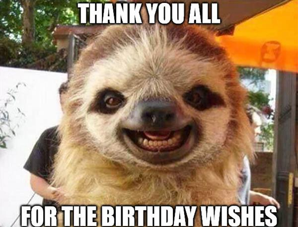 Thank-you-for-the-birthday-wishes sloth birthday meme