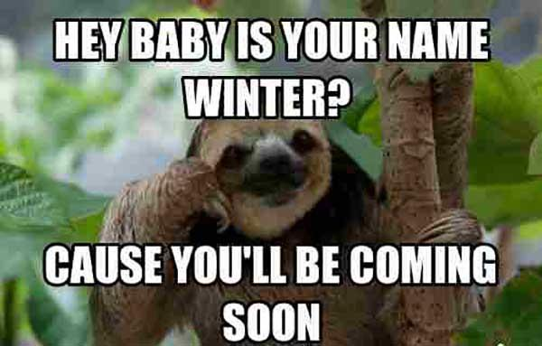 creepy sloth meme hey baby is your name winter