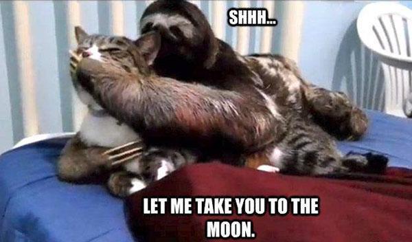 dirty sloth memes shhhh...