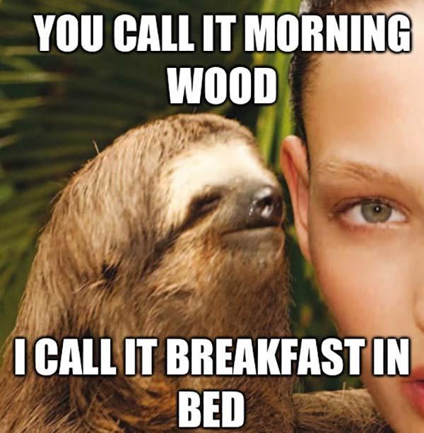 dirty sloth memes