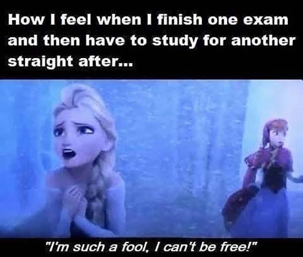 frozen memes how i feel when i finish one exam