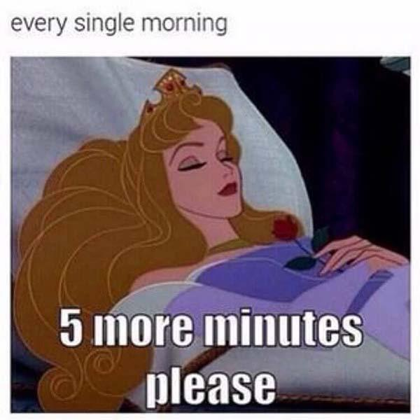 princess meme every single morning...