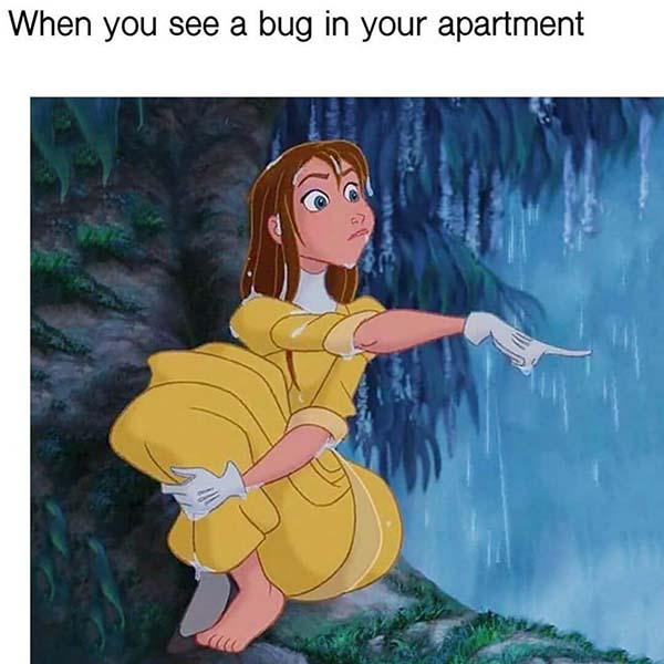 princess meme when you see a bug in your apartment