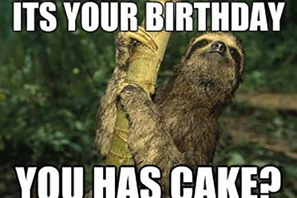 sloth birthday meme is it your bday