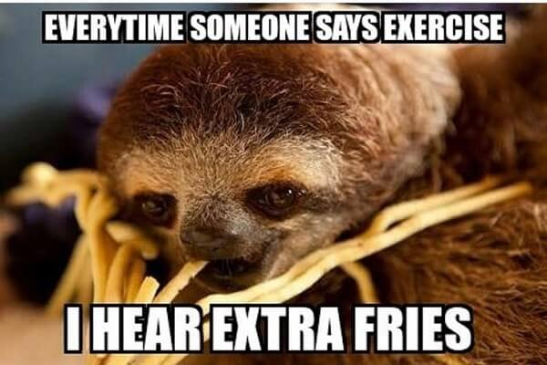 sloth meme everytime someone says exercise i hear extra fries