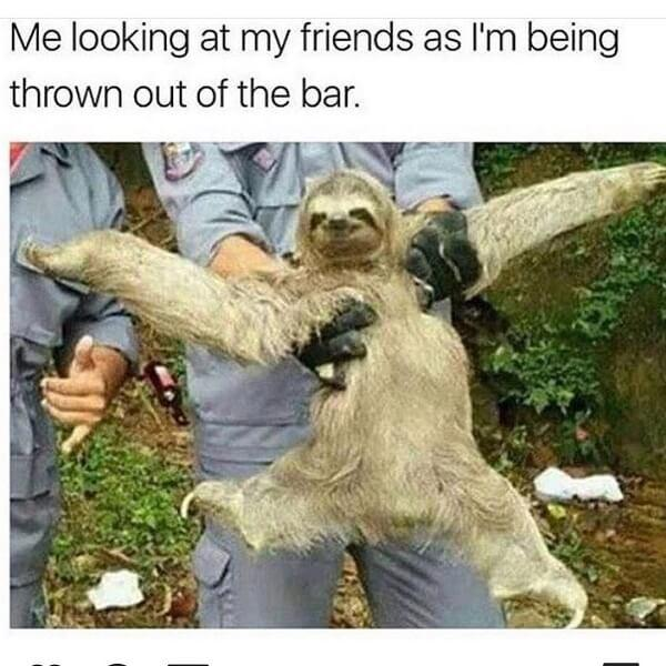 sloth meme funny me looking at my friend as im being thrown out the bar