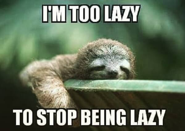 sloth meme i am too lazy to stop being lazy