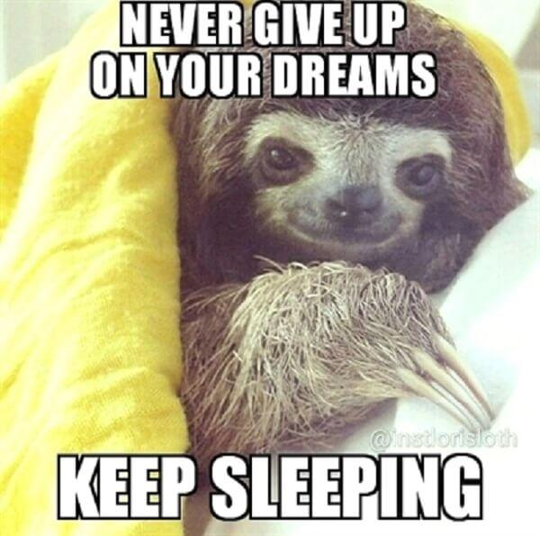 sloth meme never give up on your dreams keep sleeping