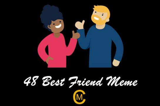 48 Best Friend Meme