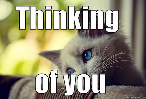 Just-thinking-about-you meme cat