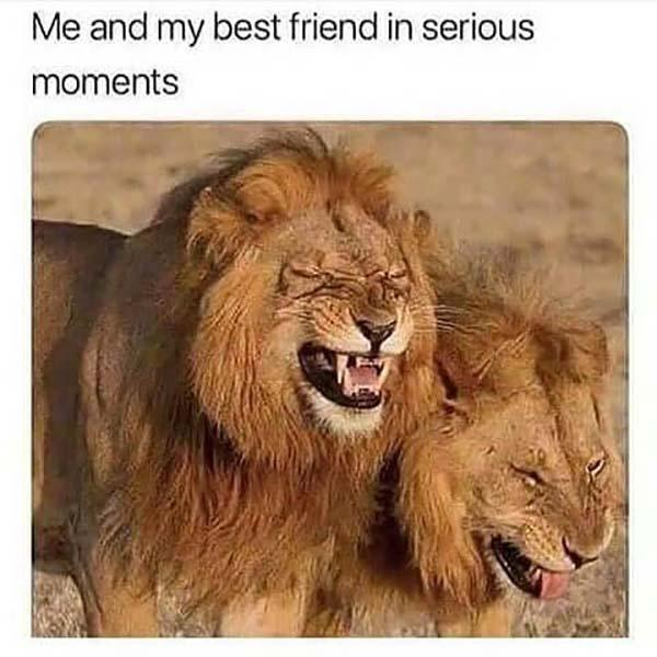 best friend meme funny me and my best friend in serious moments