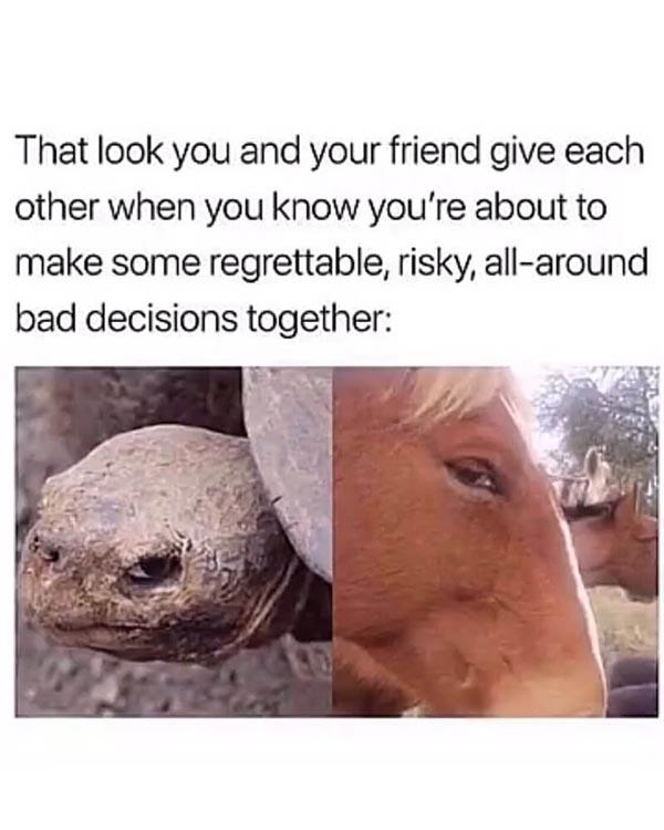 best friend meme that look you and your friend give each other...