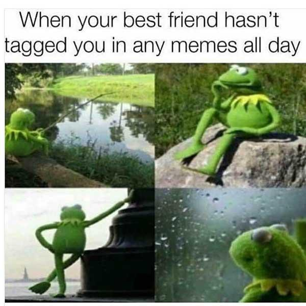 best friend meme when your best friend