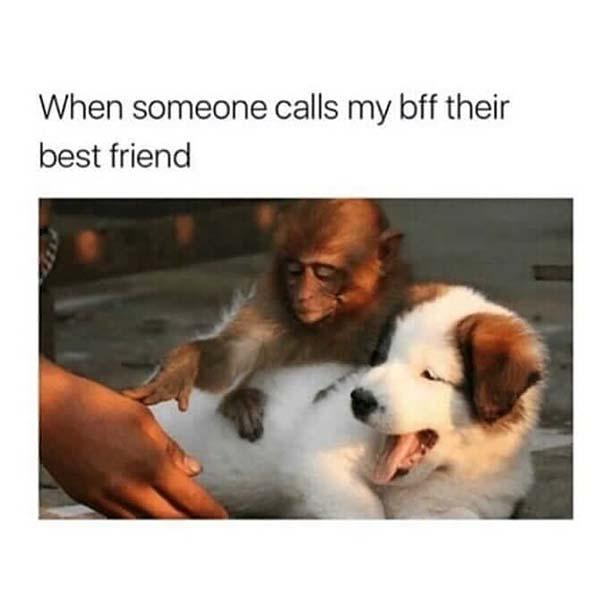 best friend memes when someone calls my bff their best friend