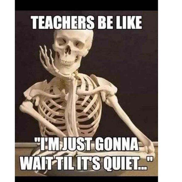 skeleton chair meme teachers be like...