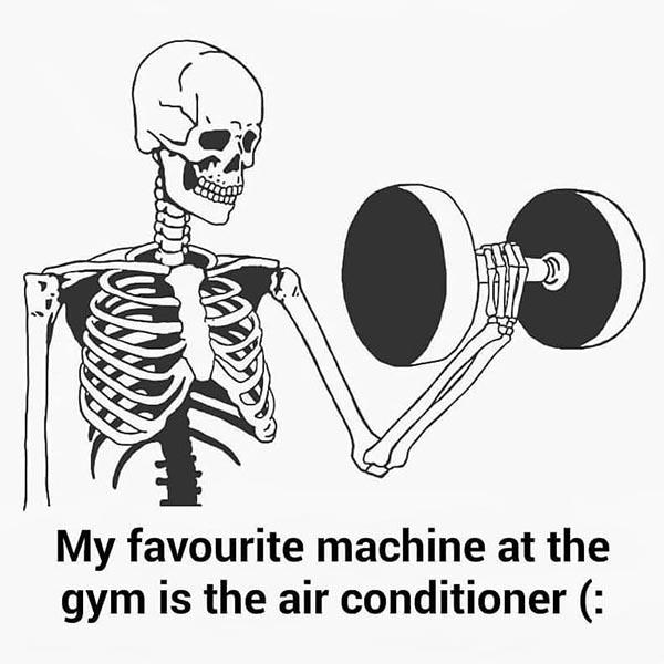 skeleton meme gym