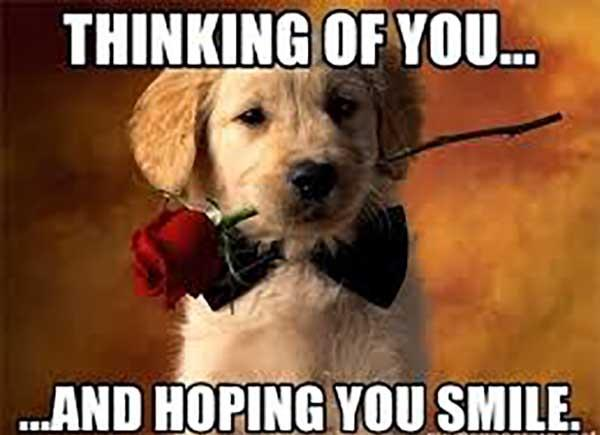 thinking of you and hoping you smile copie