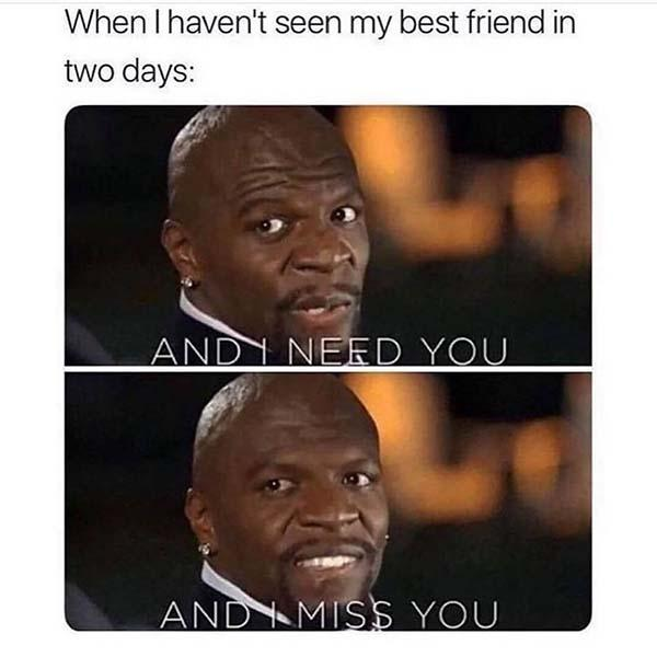 when your best friend memes when i haven't seen my best friend in two days