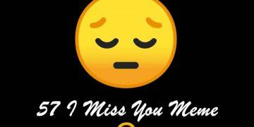 57 I Miss You Meme