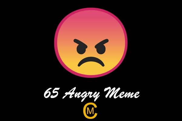 65 Angry Meme