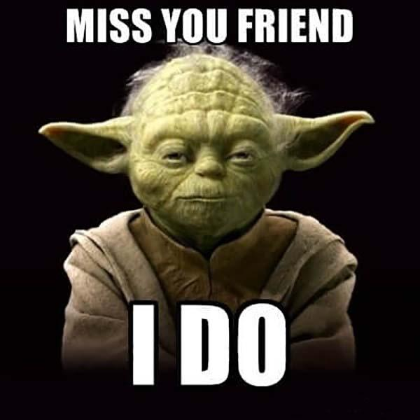 Miss-You-Friend-Yoda-Funny-Meme