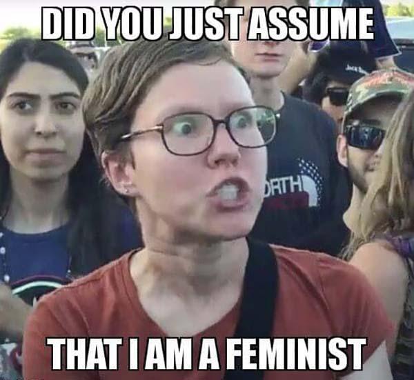 angry feminist meme