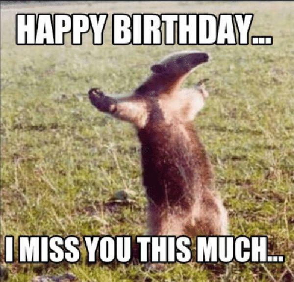 happy-birthday-i-miss-you-this-much-meme