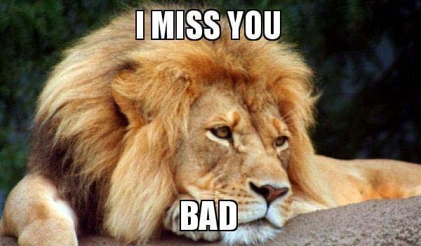 i-miss-you-bad