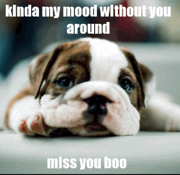 i miss you boo
