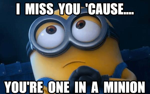 i miss you cause your one in a minion