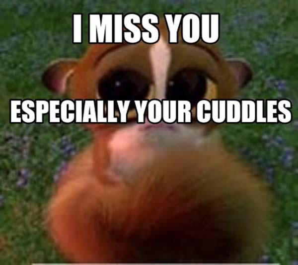 i miss you speacially your cuddles
