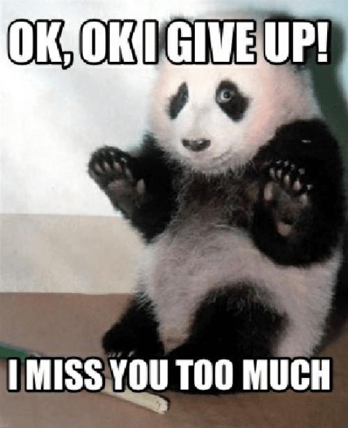okokigiveup-imiss-you-too-much-2019-cute-i-miss-you