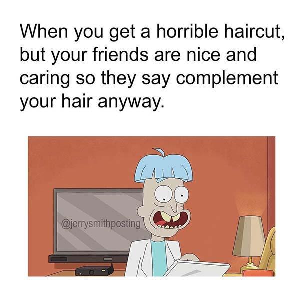 rick and morty memes horrible haircut